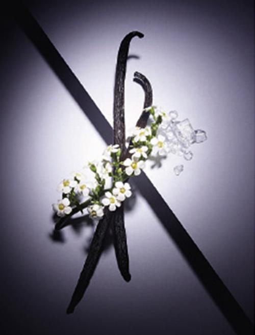 La vie est belle l'Eau de Toilette Florale Lancôme
