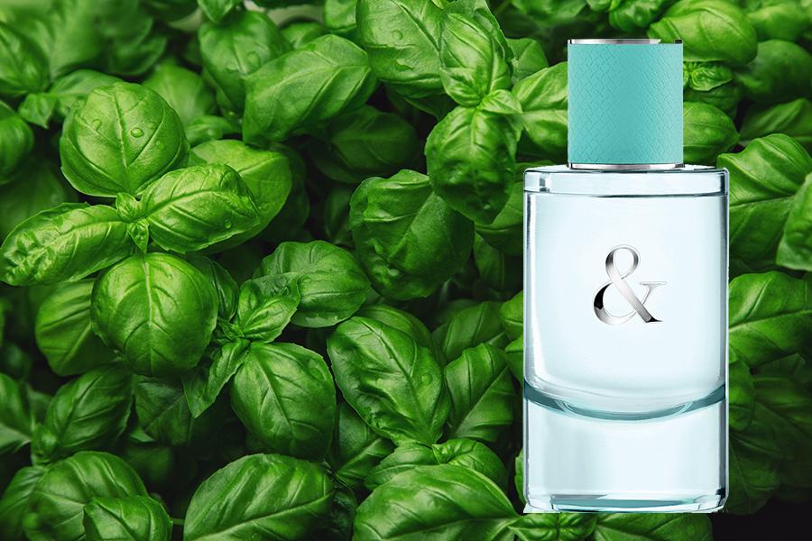 аромат весна 2020