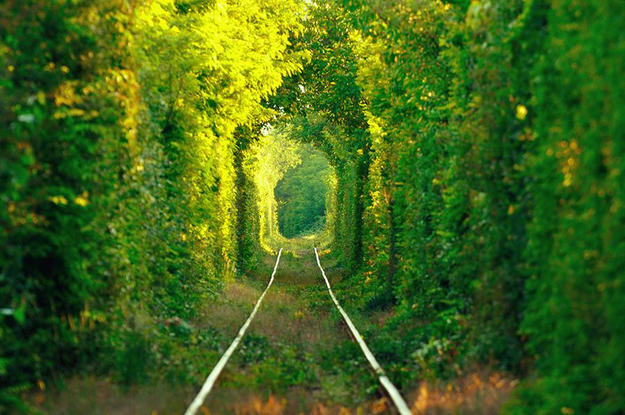 Туннель любви Клевань куда поехать в Украине