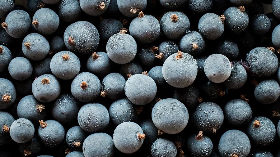 черная смородина витамин с ковид коронавирус иммунитет
