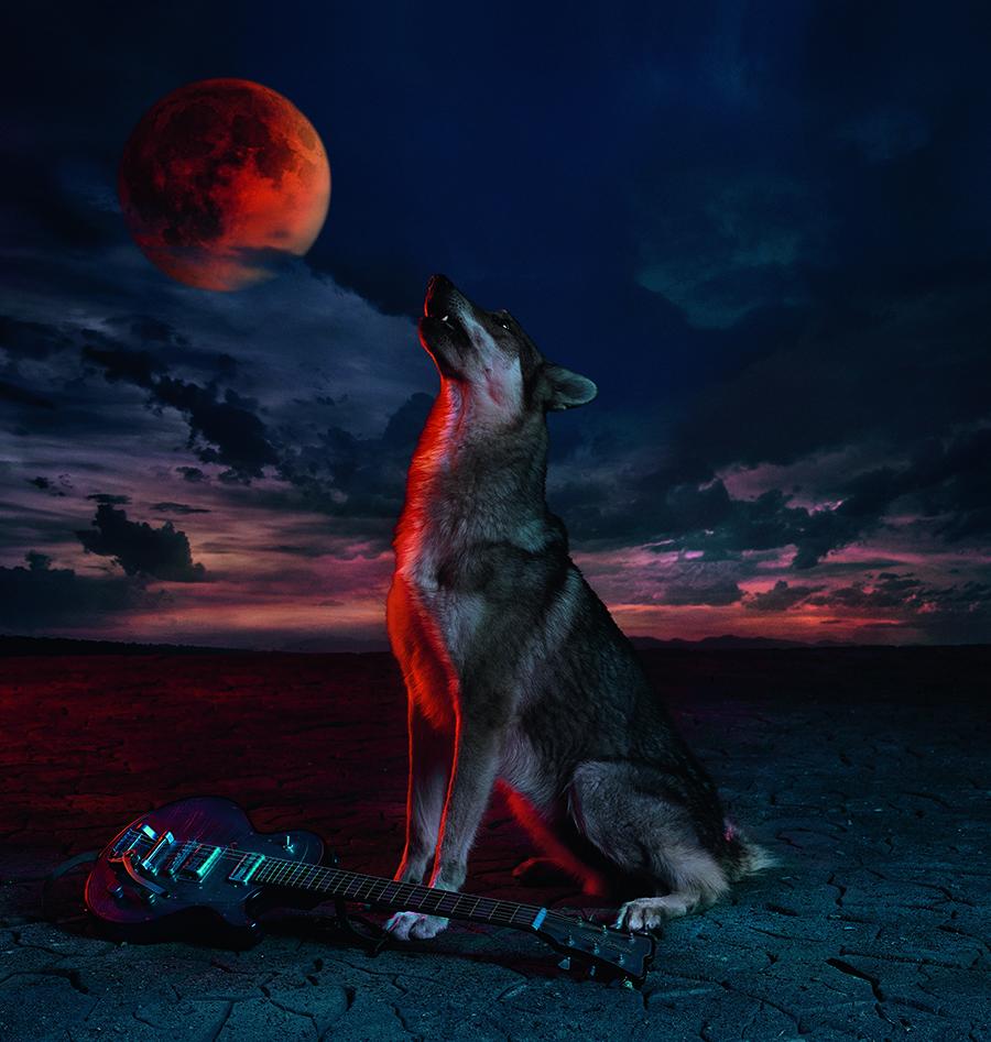 джонни депп диор видеоклип волки мужской аромат саваж dior sauvage